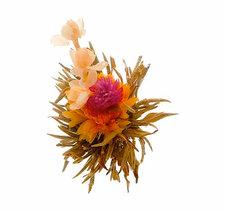 "Man Tian Xian Tao ""Sacred Flowers"" - 1st"